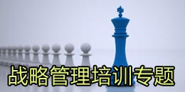 企业战略管理培训专题